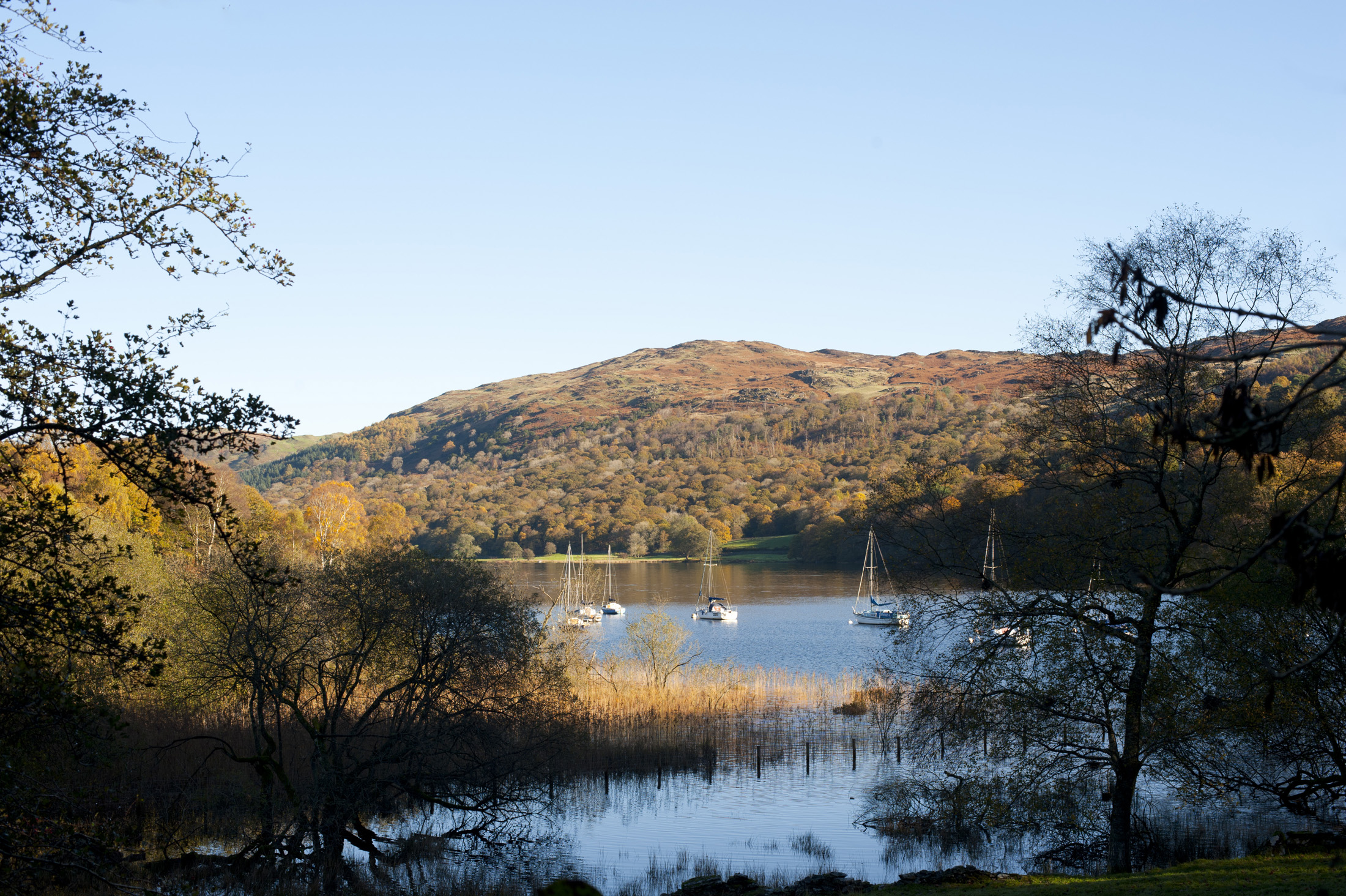 a shelterd bay on coniston water near balwith common, with low autumn sun and a clear blue sky