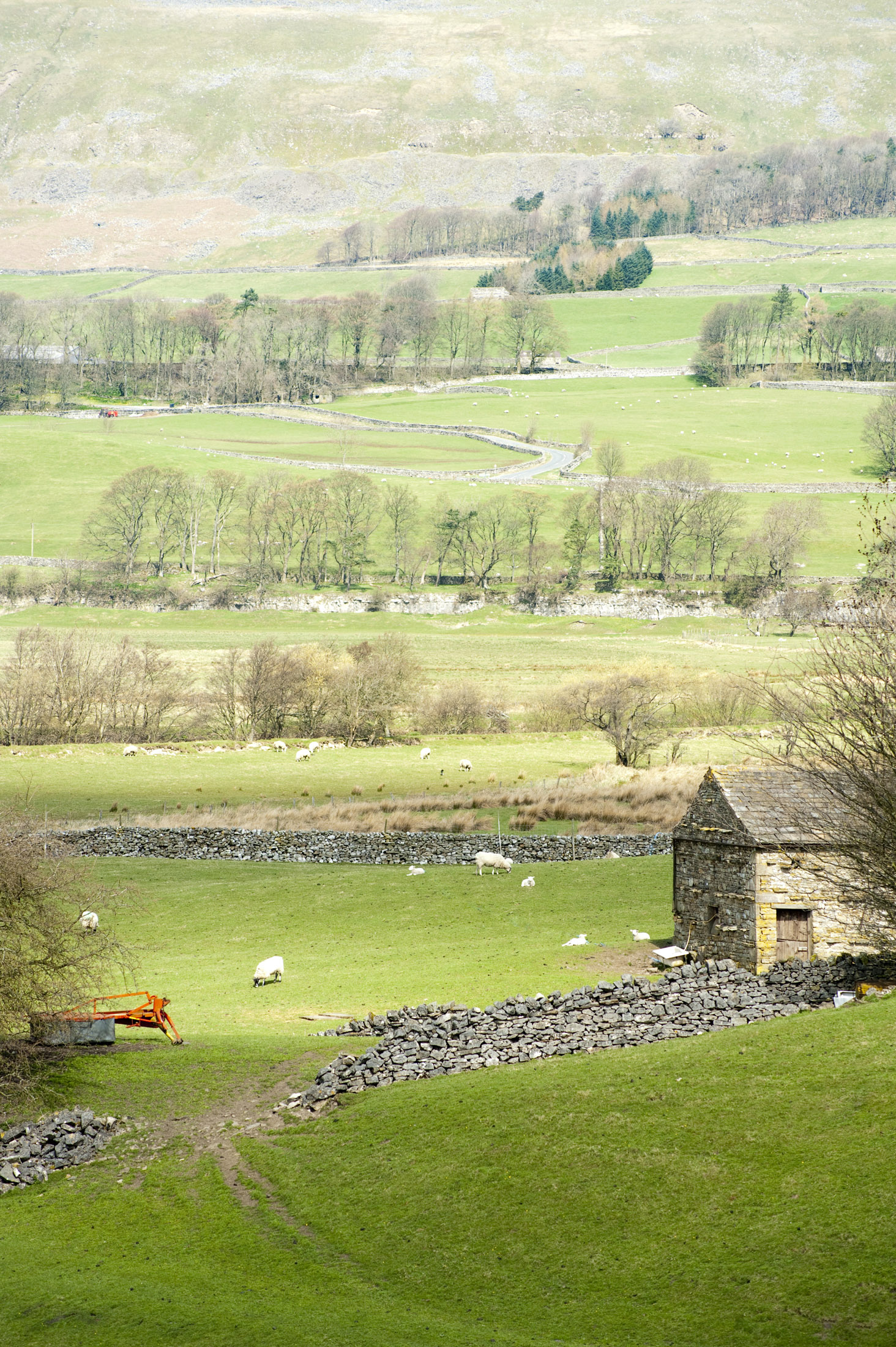 patchwork of fields in wensleydale, yorkshire dales national park