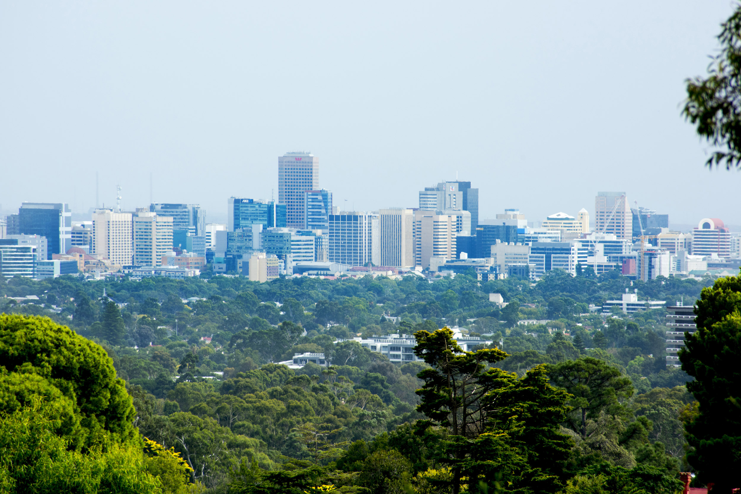 A panoramic view from the lush forest of the Adelaide hills over the tall skyscrapers of the city centre.