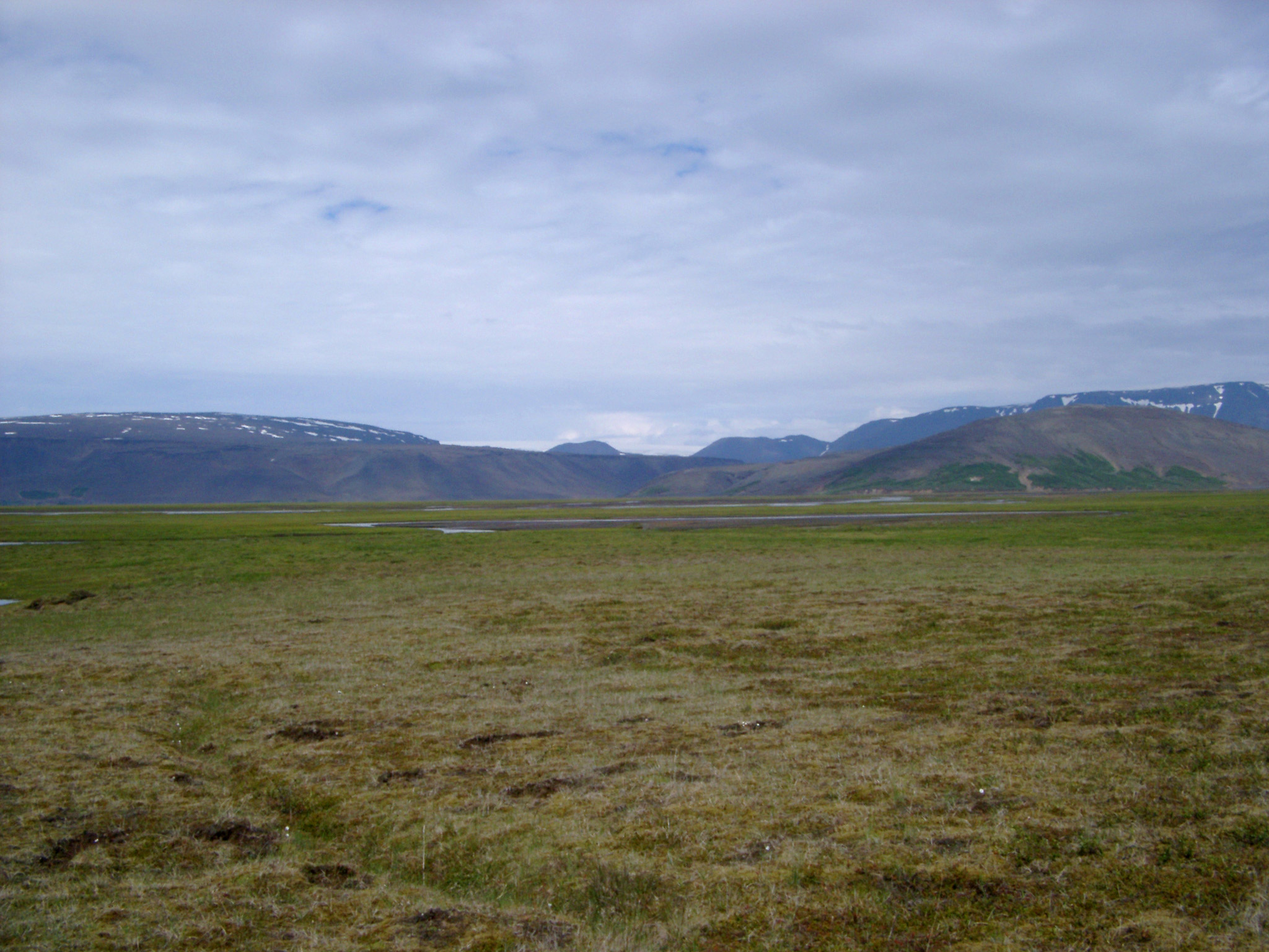 Scenic of Empty Field with Mountains and Overcast Sky in Iceland